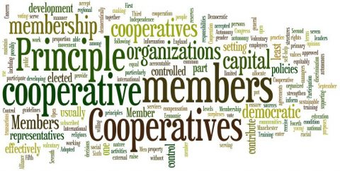 Co-operative Councils Innovation Network: Values and Principles