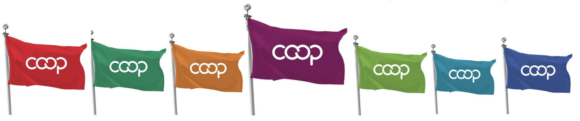 Co-op Flag
