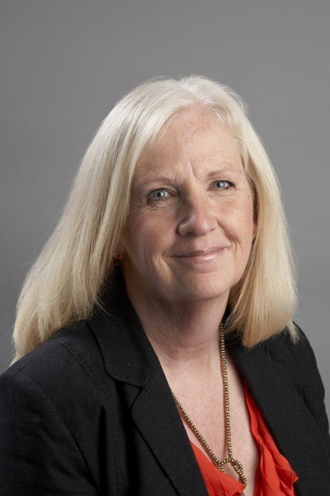 Councillor Sharon Taylor OBE Chair of the CCIN